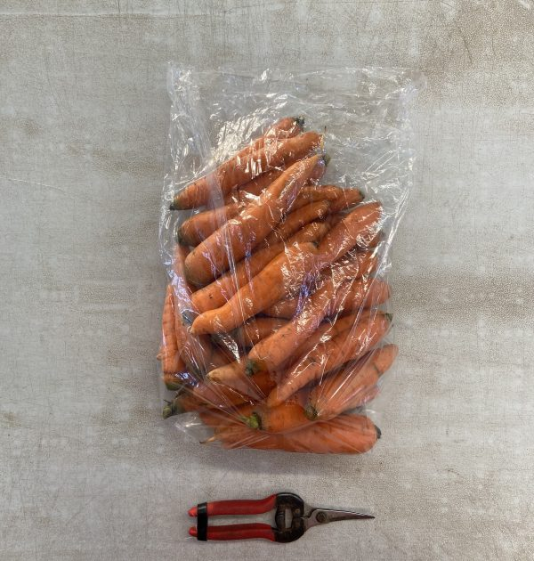 5lb carrot