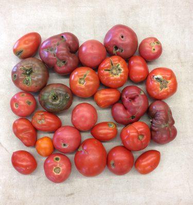 tomato seconds