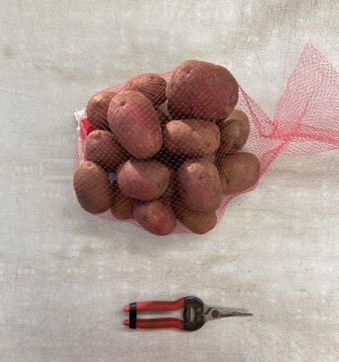 5lb red potato